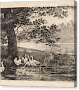 Geese At Water, Elias Stark Canvas Print