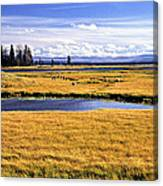Geese At Yellowstone Lake Canvas Print