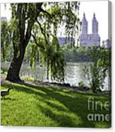 Geese In Central Park Nyc Canvas Print