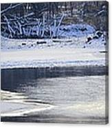 Geese On Ice Canvas Print