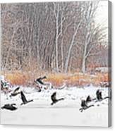 Geese Over Maumee River Canvas Print