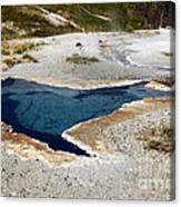 Geiser In Yellowstone Canvas Print