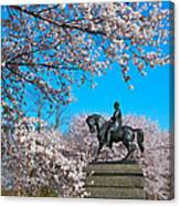 General In The Cherry Blossoms Canvas Print