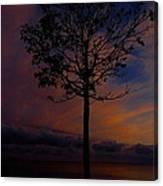 Genesis Tree Canvas Print