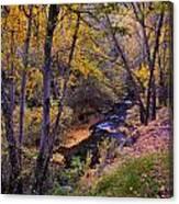 Genil River Canvas Print