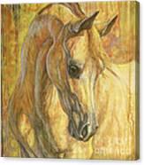 Gentle Spirit Canvas Print