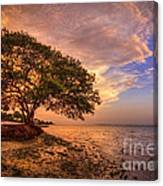 Gentle Whisper Canvas Print