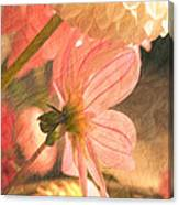 Gentleness Canvas Print