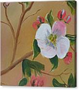 Georgia Flowers - Apple Blossoms- Stretched Canvas Print
