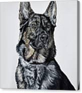 German Shepherd Bodhi Canvas Print