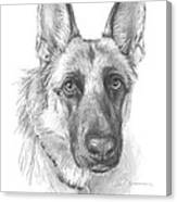 German Shepherd Face Pencil Portrait Canvas Print