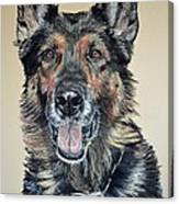German Shepherd Jim Canvas Print