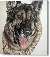 German Shepherd Rudi Canvas Print