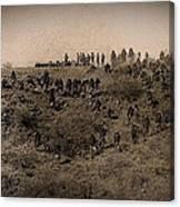 Geronimo's Band Of Warriors 1886-2012 Canvas Print