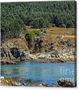 Gerstle Beach Canvas Print