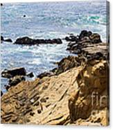 Gerstle Coastline Canvas Print