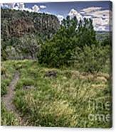 Get Off The Road And Enjoy Nature Canvas Print