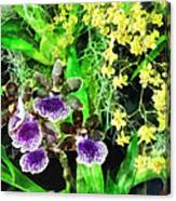 Geyser Jaimie And Golden Fantasy Orchids Canvas Print
