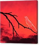 Ghost Bird Canvas Print