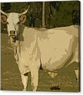 Ghost Cow 2 Canvas Print