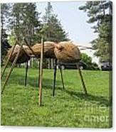 Giant Ant Canvas Print