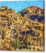 Giant Cordon Cactus Canvas Print