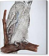 Giant Eagle Owl Canvas Print