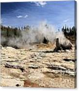 Giant Geyser Group Canvas Print
