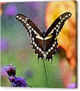 Giant Swallowtail Butterfly Photo-painting Canvas Print