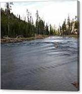 Gibbon River Canvas Print