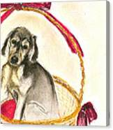 Gift Basket Canvas Print