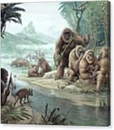 Gigantopithecus With Homo Erectus Canvas Print