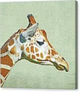 Giraffe Mug Shot Canvas Print