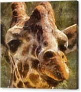 Giraffe Photo Art 01 Canvas Print