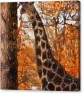 Giraffe Photo Art 03 Canvas Print