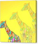 Giraffe X 3 - Yellow - The Card Canvas Print