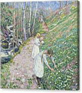 Girls Picking Wood Anemone Canvas Print
