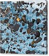 Glacial Gold Canvas Print
