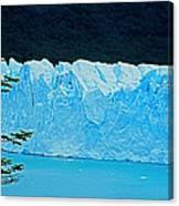 Glaciar Perito Moreno - Patagonia Canvas Print