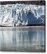 Glacier Bay National Park Canvas Print