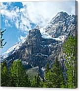 Glacier Seen From Kicking Horse Campground In Yoho Np-bc Canvas Print
