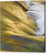 Glacier Stream Glacier National Park Canvas Print