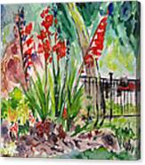 Gladiloli-3 Canvas Print