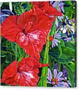 Gladiola And Echinacea Canvas Print