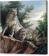 Glamorous Friendship- Snow Leopards Canvas Print