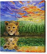 Glancing In The Water Canvas Print