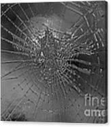 Glass Spider Canvas Print