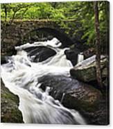 Gleason Falls Canvas Print