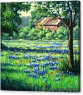 Glen Rose Bluebonnets Canvas Print