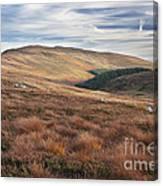 Glenmacnass 4 Canvas Print